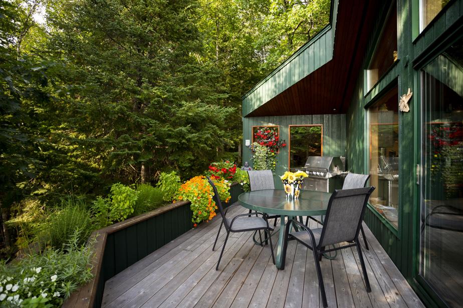 Fines herbes et fleurs colorées entourent la terrasse, située près de la cuisine.