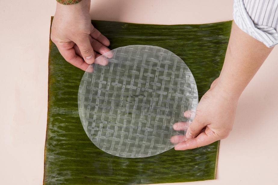 4. Tremper la feuille de riz dans de l'eau à température ambiante (ne pas utiliser d'eau chaude, car la feuille deviendra trop collante et mince) et placer ensuite la feuille de riz sur une assiette.