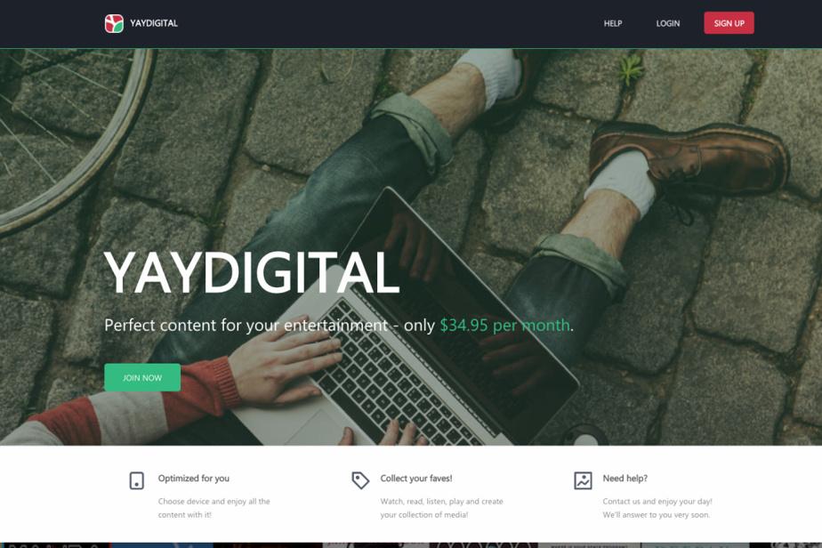 Page d'accueil du site Yaydigital
