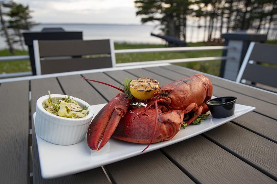 L'assiette de homard du restaurant de l'auberge, Le Henri-Menier, un spécimen fraîchement pêché au large d'Anticosti.