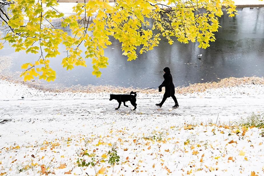 Les premiers flocons de neige de la saison froide sont tombés sur le parc La Fontaine.