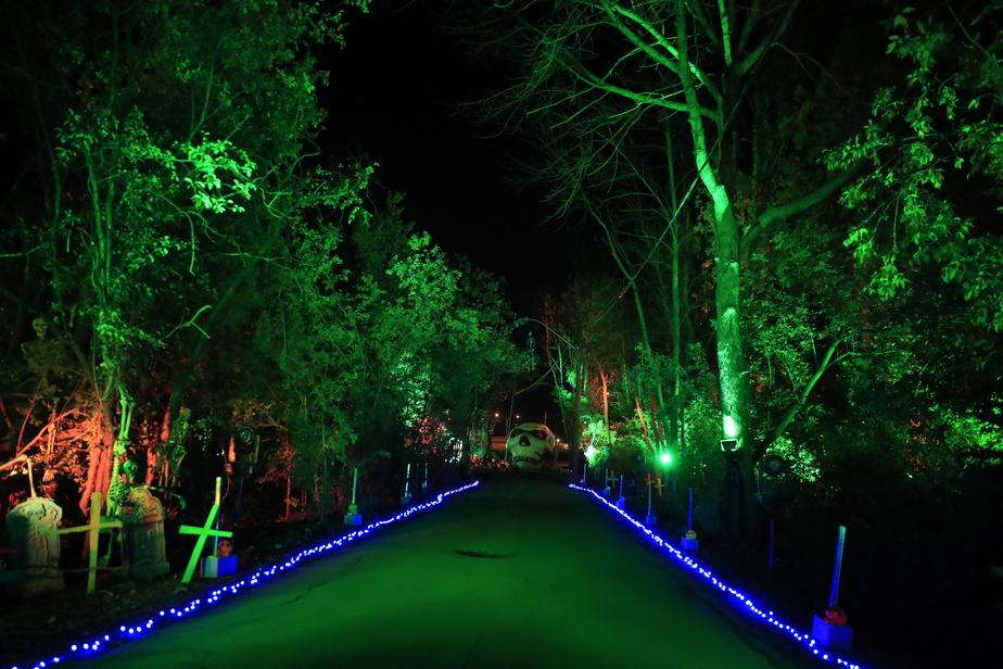 Une forêt (en arbres véritables!) a été intégrée au parcours.