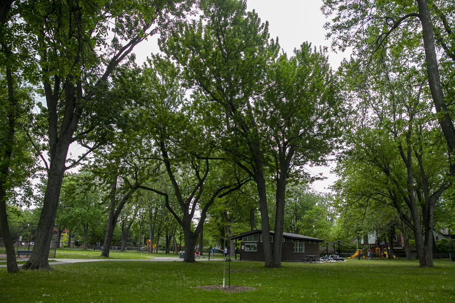 Le parc Nicolas-Viel, qui borde la rivière des Prairies.