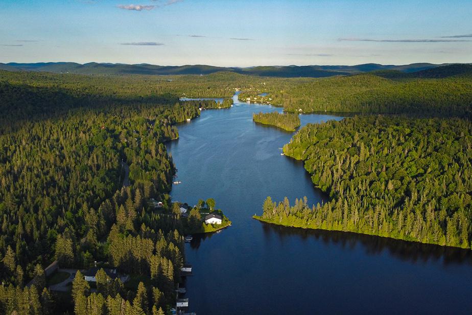 Dimanche d'été tranquille au lac Papineau (Petit lac Long), dans les Laurentides