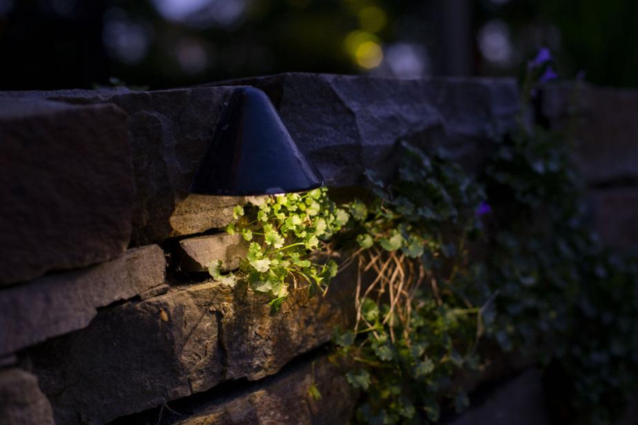 Quelques lampes miniatures éclairent les murets et la végétation qui y croît.