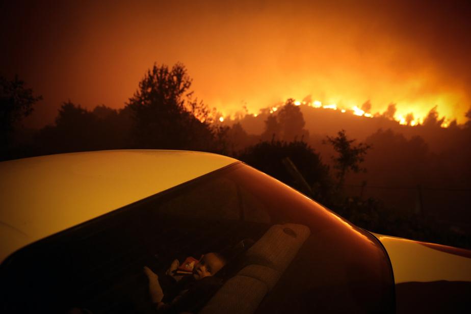 En septembre dernier, un incendie de forêt faisait rage à Oliveira de Frades, au Portugal. Le feu s'est étendu rapidement dans une forêt d'eucalyptus, particulièrement inflammables. Au moins 300pompiers ont été requis pour maîtriser les flammes. La photo est nommée dans la catégorie «Instantanés d'actualité».