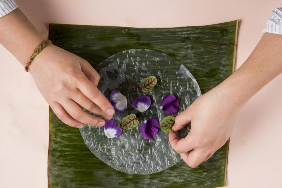 5. Commencer en plaçant à plat au centre de la feuille, au goût, des fleurs comestibles, des feuilles de menthe fraîche et de basilic et autres petites verdures.