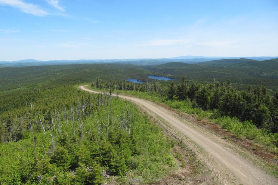 «Mon coup de cœur: le Mont Longue-Vue, dans la ZEC Bas-Saint-Laurent (région deRimouski). Jamais montagne n'aura été aussi bien nommée! Du haut de la tour d'observation, le panorama est magnifique, du fleuve Saint-Laurent jusqu'aux montagnes. Accessible en voiture ou en VTT, ma façon préférée de visiter ce sommet demeure le vélo demontagne. À partir de la rivière Rimouski (Trinité-des-Monts), le parcours de 14km exige de bonnes jambes, mais la récompense au sommet en vaut le coup. C'est le pays de l'orignal, mais plusieurs autres observations sont possibles: lynx, raton laveur, porc-épic et autres. Peuconnu et peu fréquenté, ce sommet mériterait plus de visiteurs, même si un côtéde moi voudrait le garder secret…» — Daniel Hardy