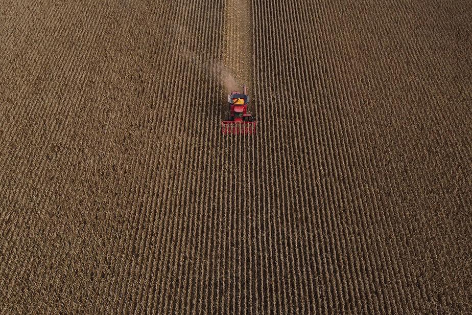Vue aérienne de travaux agricoles dans un champ de la Montérégie