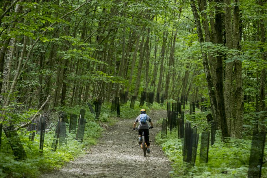 Des vélos peuvent être loués à Bromont, montagne d'expérience.