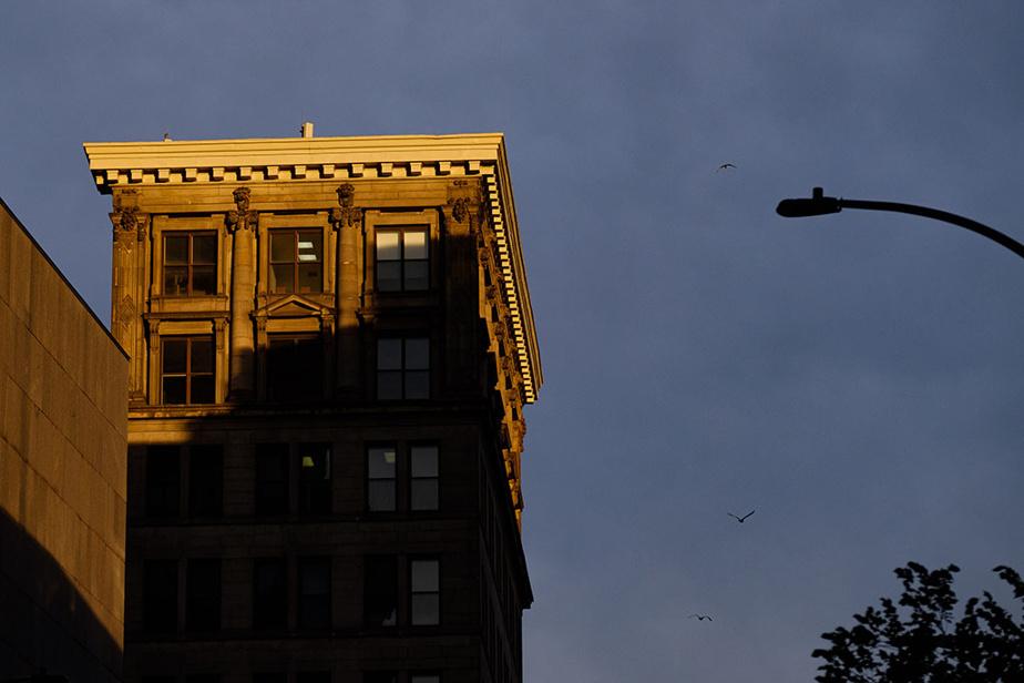 Un édifice du Vieux-Montréal baigne dans une lumière dorée.