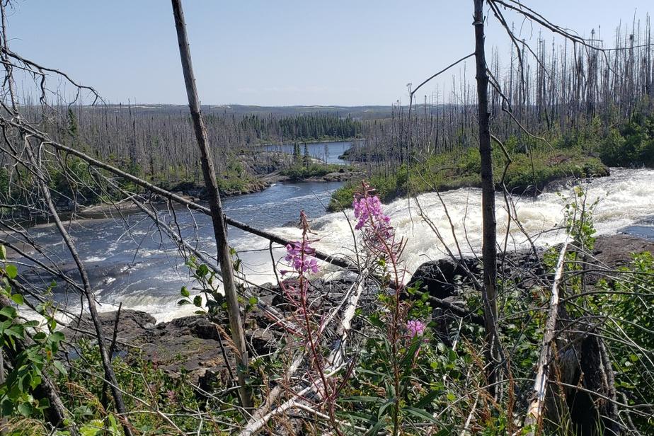 «Le point culminant de notre voyage sur la Côte-Nord a été la Baie-Johan-Beetz. Nousavons décidé d'emprunter le sentier de la chute Quetachou, balisé au kilomètre1292. Iltraverse une partie d'une forêt incendiée en 2013. Le sentier, quoiqu'étroit, est bien praticable jusqu'au premier belvédère naturel qui permet de voir le début de la chute. On peut même s'imaginer en chercheur d'or vu la découverte de paillettes dorées dans les cavités du cours d'eau! Après le premier belvédère, on peut encore continuer lapromenade sur un ou deux kilomètres sur le chemin parsemé de baies, jusqu'à une jolie petite crique bordant le fleuve etune vaste étendue de marais.» — Loïc Poussard