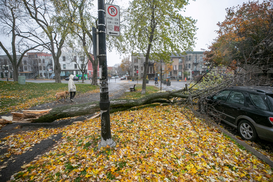 26 000 clients toujours sans électricité — Centre du Québec