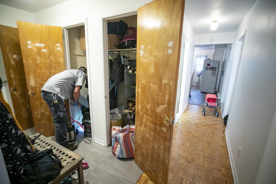 Chaque recoin de l'appartement est traité. Certains exterminateurs expédient le travail en une heure, mais Laurent préfère consacrer à chaque intervention une heure et demie à deux heures.
