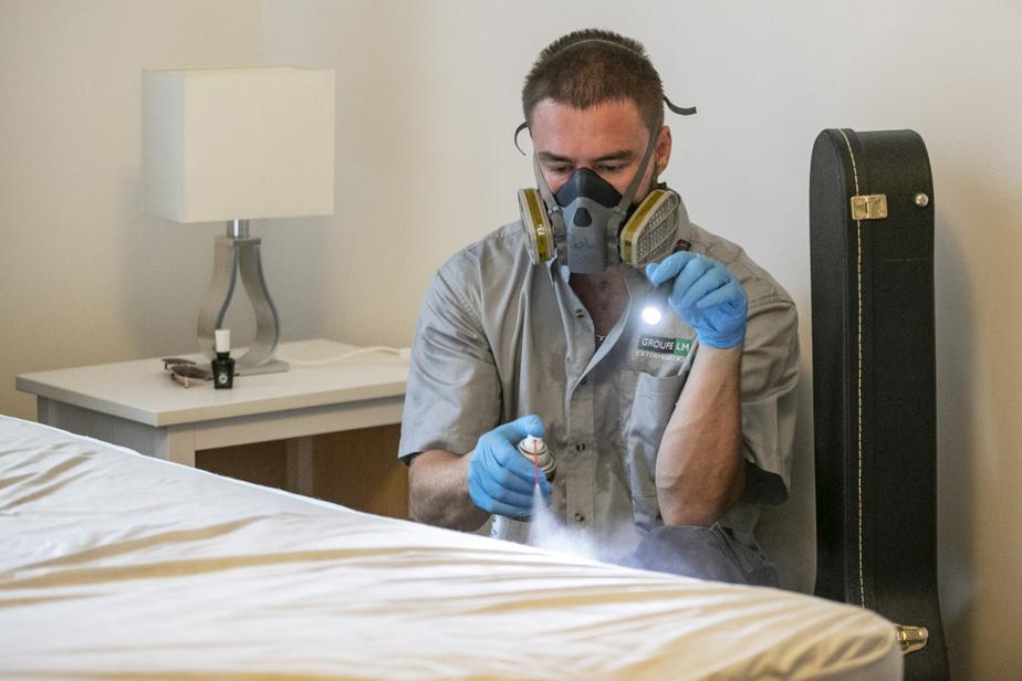 Équipé d'un masque filtrant, il examine les moindres coutures des matelas. C'était ici l'épicentre du problème.
