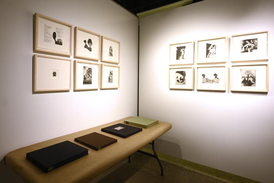 Vue de l'exposition des livres d'artiste de Louis-Pierre Bougie