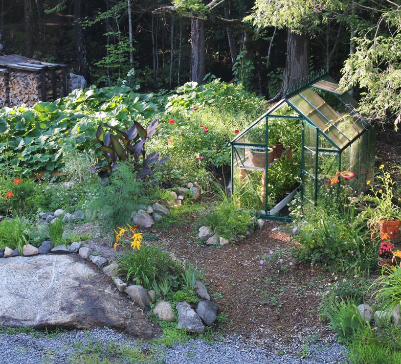 Anne-Josée Laquerre a acheté la serre d'un voisin, l'été dernier. Elle a fait ses semis au printemps, dans la maison, et constate avec satisfaction que tout pousse. À l'extérieur de la serre, des courges, des concombres, des courgettes et un peu de céleri croissent allègrement.