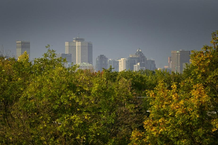 On peut apercevoir les édifices du centre-ville de Montréal en haut de la colline.