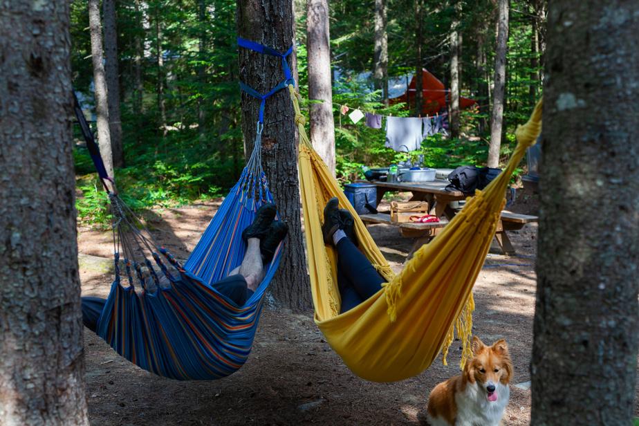 Pause détente au camping du parc régional de la Forêt Ouareau