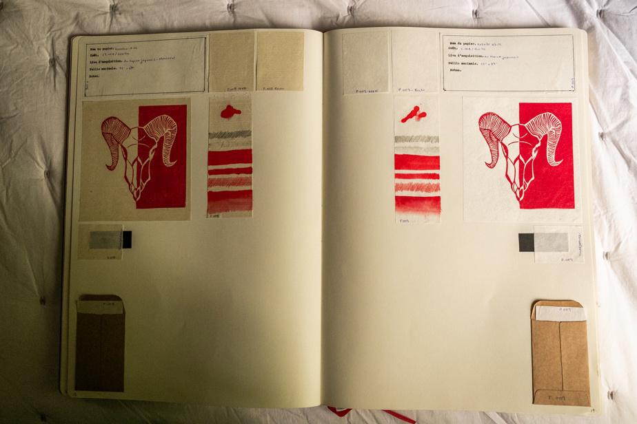À l'intérieur, l'autrice consigne avec minutie tous ses essais d'impression artisanale avec différents types de papiers et de couleurs.