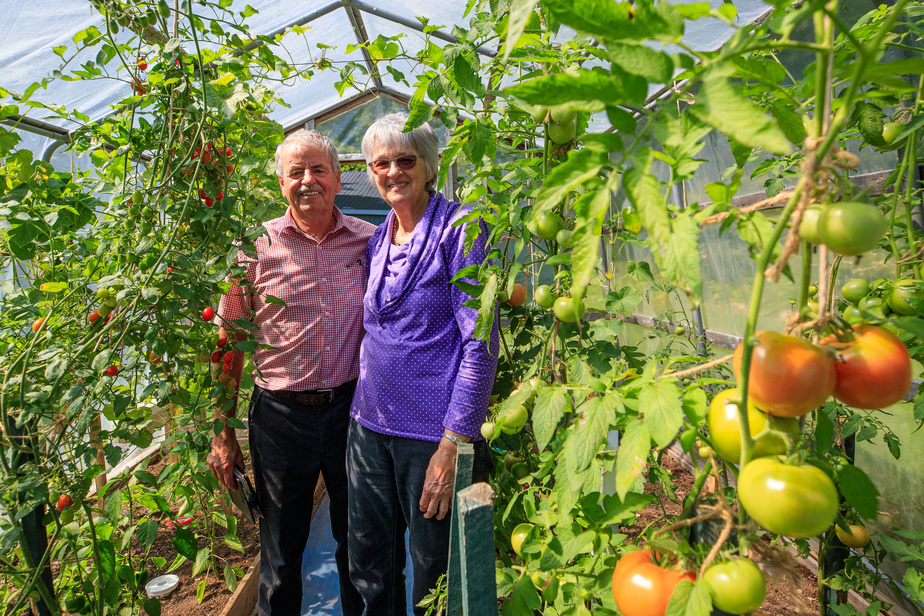 Hélène Bouffard donne volontiers un coup de main à l'extérieur. Elle rejoint son mari dans la serre et le potager pour tirer parti de ce qui pousse et faire des conserves. À noter: les tomates, dans cette photo, trahissent le fait que le reportage a été entamé à la fin de l'été dernier.
