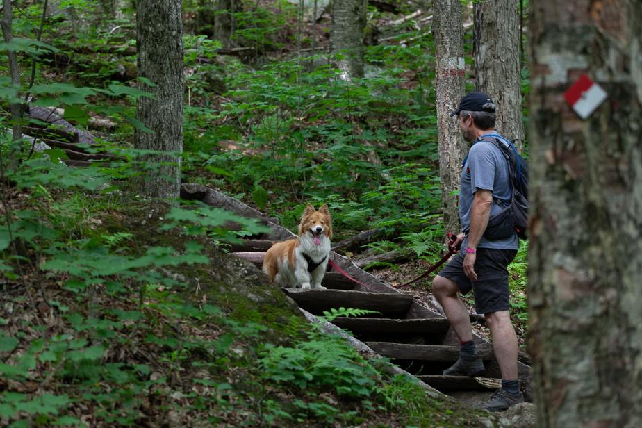 Pour cette boule d'énergie qu'est Lillie, le défi de la randonnée en montagne a été très concluant.