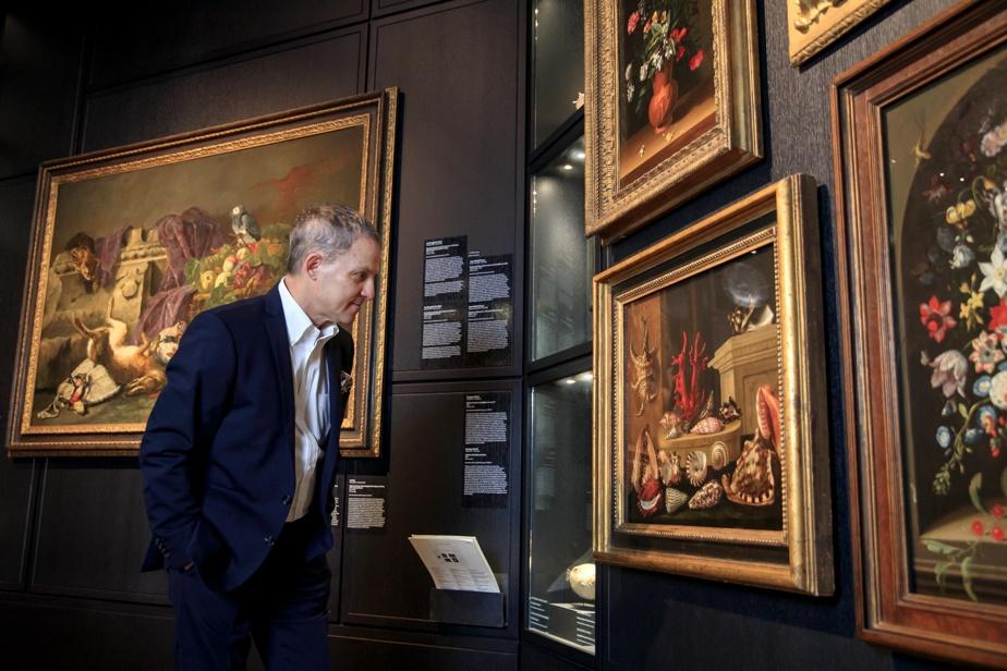Stéphane Aquin devant le tableau Nature morte aux coquillages et au corail, de Jacques Linard (1597-1645). Collection MBAM.