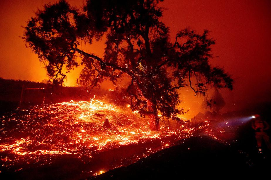 La Californie en état d'alerte — Incendies