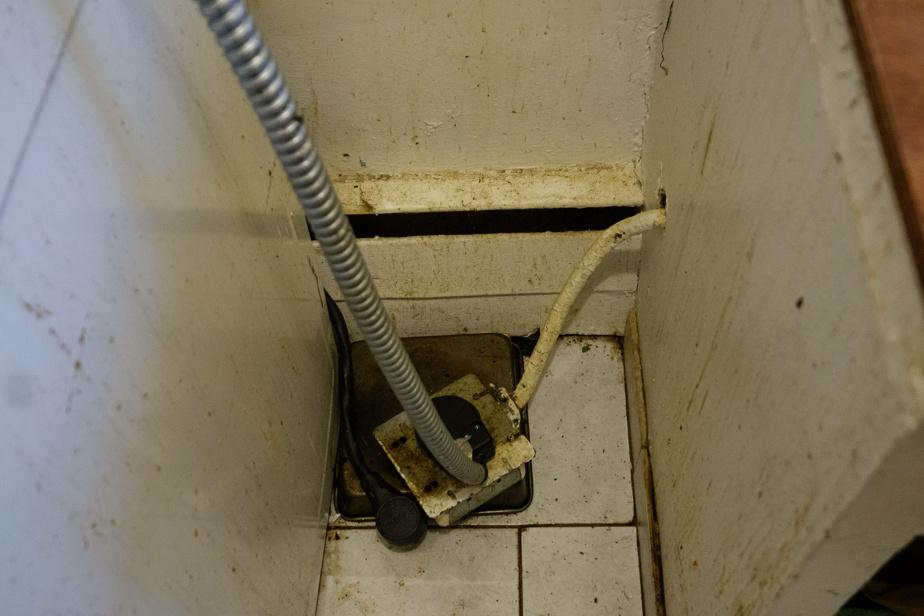 La moisissure parsème les murs de l'appartement d'Hamid Essafi, qui jongle aussi avec la venue de souris.