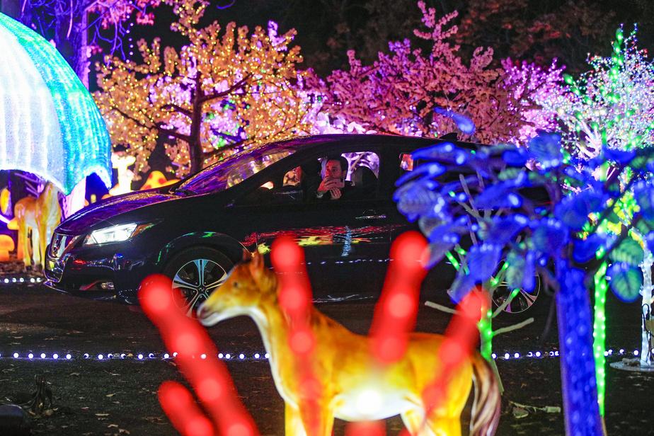 Pas moins de 30000structures lumineuses composent le décor d'Illumi cette année.