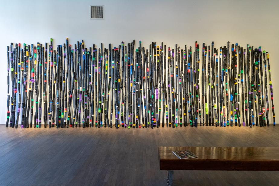 La série Bâtons de distanciation de deux mètres, de Michel Goulet