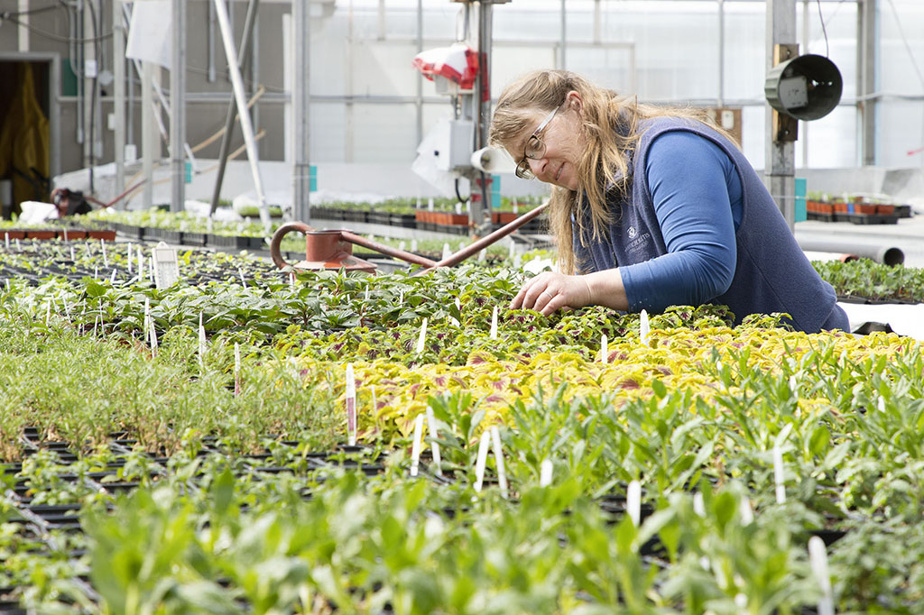 Patricia Gallant, head horticulturalist at Les Jardins de Métis, notably oversees the production of 25,000 annual plants.