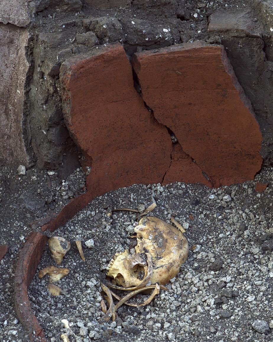 Les scientifiques ont retrouvé dans les creusements de la table des reliefs alimentaires qui pourraient apporter de précieuses informations sur les habitudes gastronomiques à Pompéi au moment de l'éruption du Vésuve en 79 après JC.