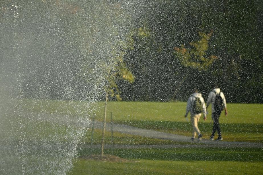 Une fontaine jaillit de l'un des étangs.