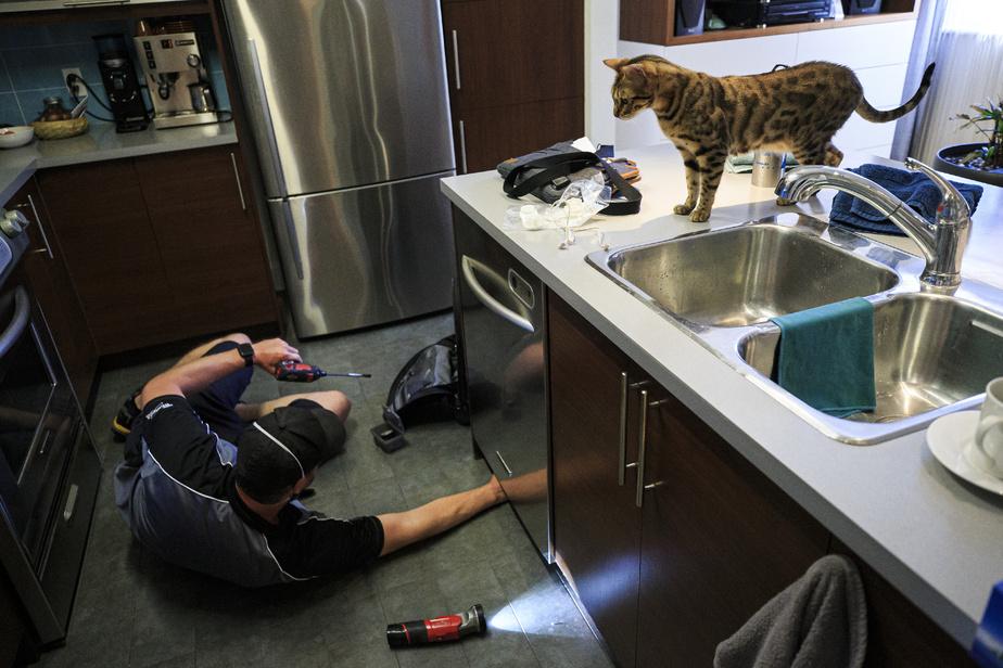 Les réparateurs d'appareils électroménagers attirent souvent la curiosité des membres du foyer.