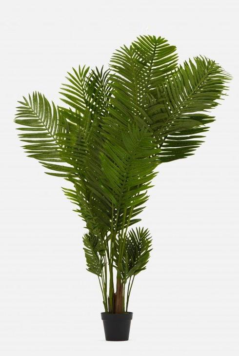 L'Areca est une plante tropicale artificielle assez populaire, indique Kim Tran, coordinatrice des relations publiques et médias sociaux chez Structube. 169$.