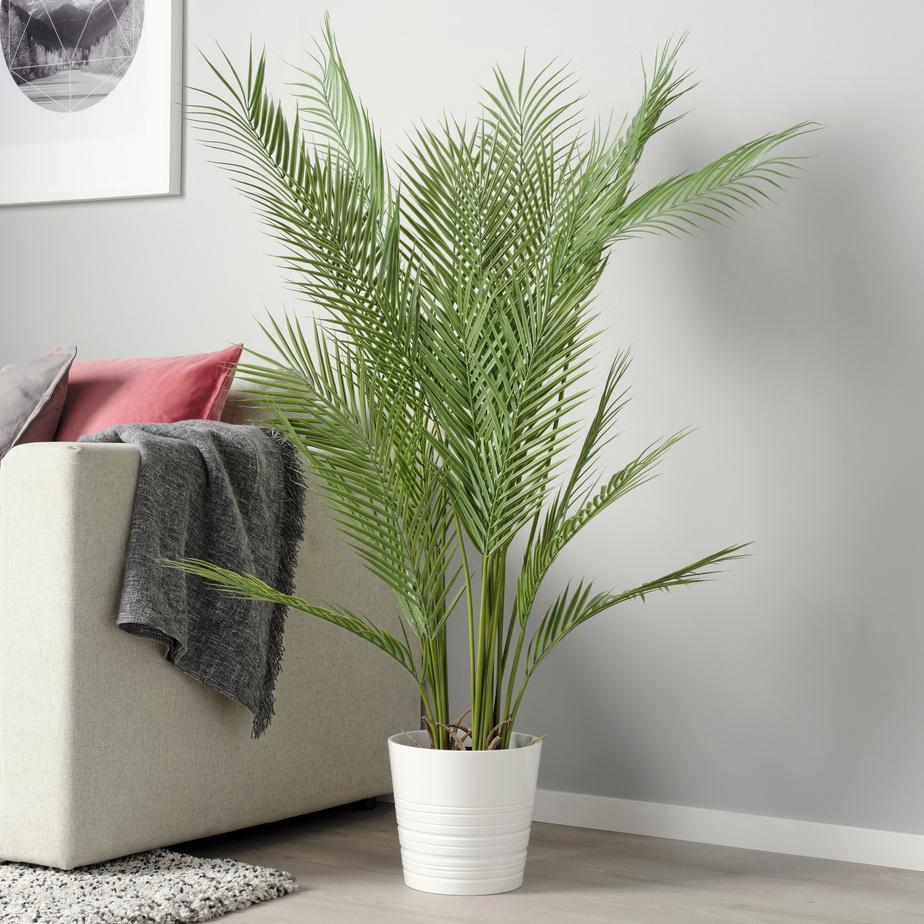 Cette plante artificielle de la collection Fejka s'inscrit dans la tendance d'intégrer des plantes, qui rappellent un climat tropical et apportent une touche estivale à l'intérieur, souligne Heena Saini, porte-parole d'IKEA Canada.