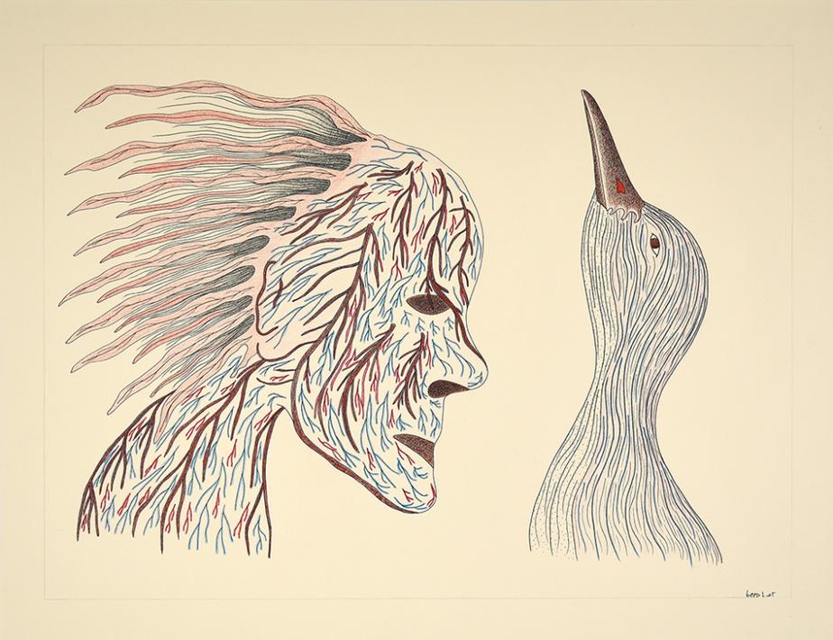 Sans titre (072-0854), 1996-1997, Qavavau Manumie, encre et crayon de couleur, 50,8cm x 66cm