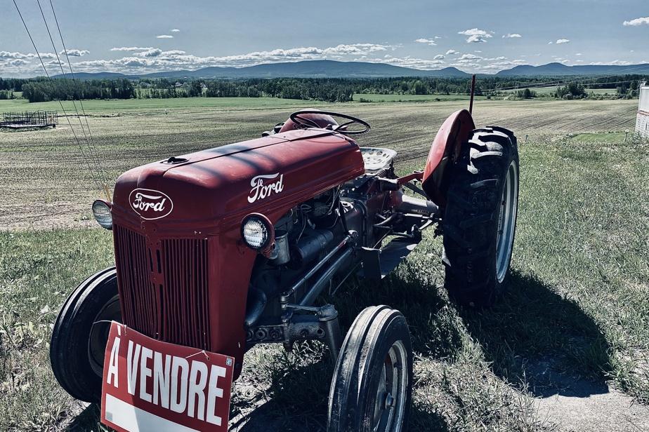 «Après avoir reçu une contravention dans la vallée de la Matapédia, j'ai eu envie de m'acheter ce tracteur qui était en vente à l'entrée de Sayabec. Il n'était pas sans me rappeler le film The Straight Story, de David Lynch, et m'aurait assuré de ne plus jamais avoir à m'inquiéter de ma vitesse sur les routes.»