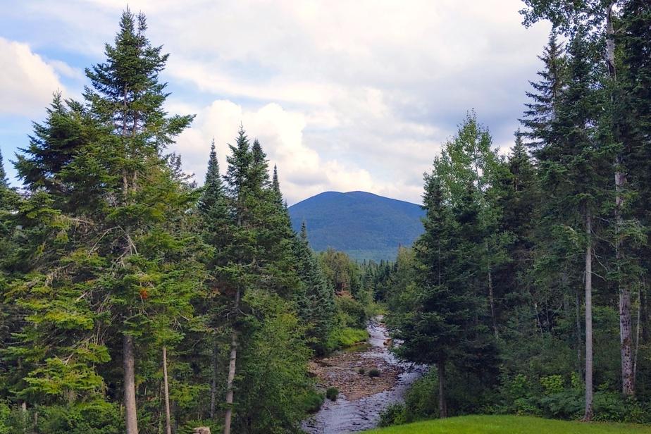 Le mont Gosford est accessible à partir du rang Tout-de-Joie, à Saint-Augustin-de-Woburn. Le secteur est boisé, mais il est possible d'y trouver de jolis points de vue du plus haut sommet du sud du Québec.