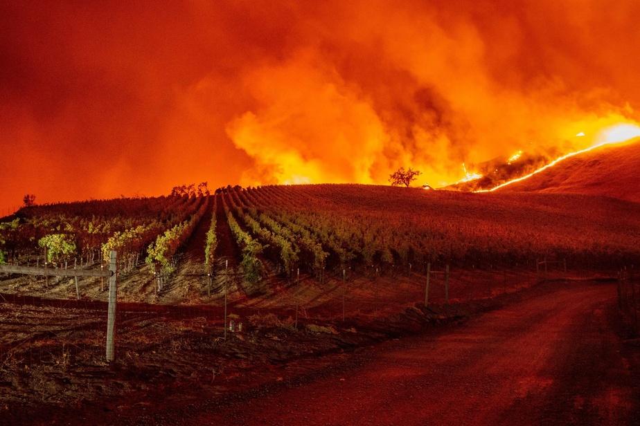 Vidéos: La Californie en proie à des flammes dévastatrices, des milliers d'évacuations