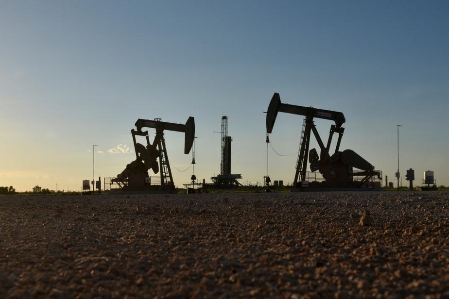Le pétrole en chute libre !