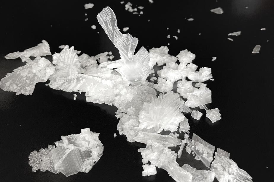 Cristaux de sel de l'entreprise Sel Saint-Laurent