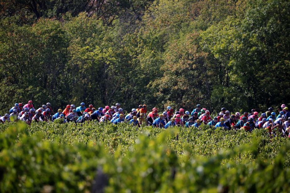 Pour l'avant-dernière étape de cette Grande Boucle, les coureurs se disputeront l'unique contre-la-montre du Tour sur 36,2kilomètres entre Lure et La Planche des Belles Filles.