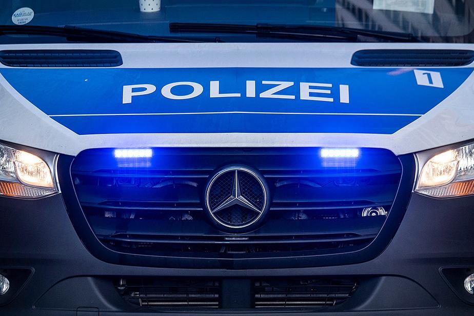 Démantèlement d'un groupuscule d'extrême droite, 12 arrestations — Allemagne