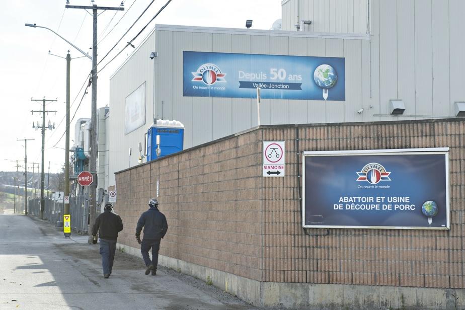 La grève se poursuit à l'usine d'Olymel de Vallée-Jonction)