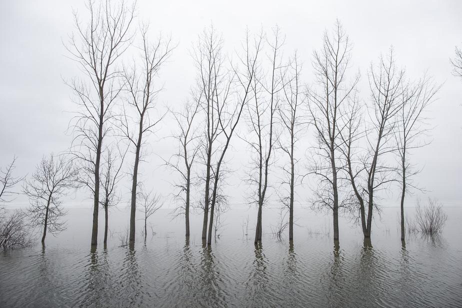 Zones inondables Des maires appellent Québec à revoir son projet de loi)