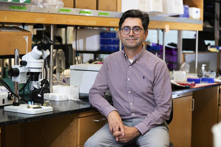 Le chercheur américain d'origine libanaise, Ardem Patapoutian
