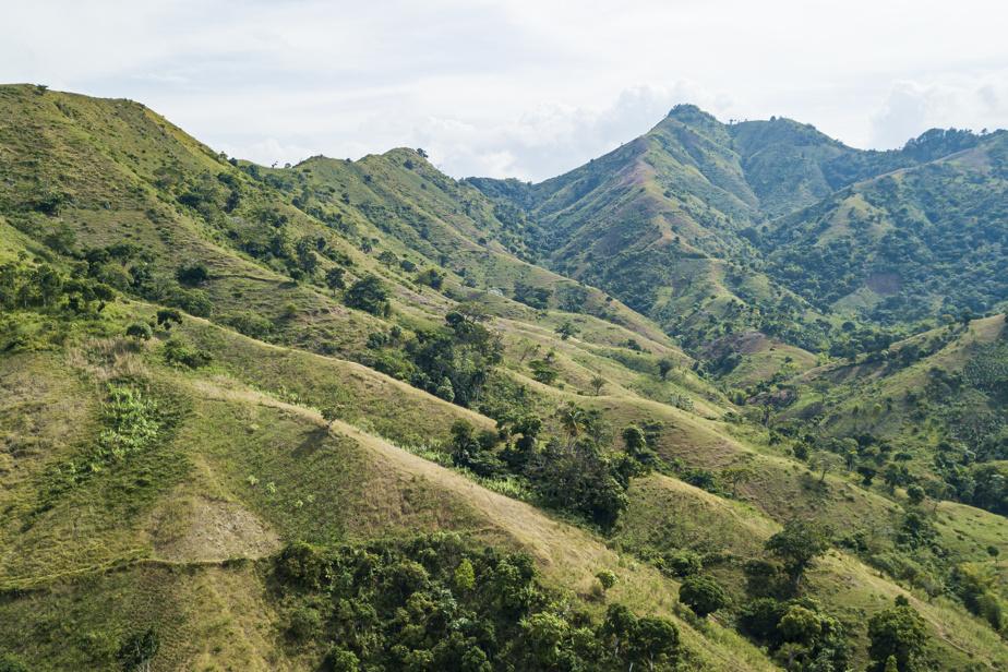 La déforestation est importante en Haïti, en partie en raison de la production de charbon.