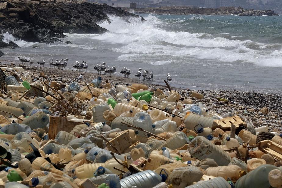 Les navires seraient une source majeure de marées de bouteilles de plastique
